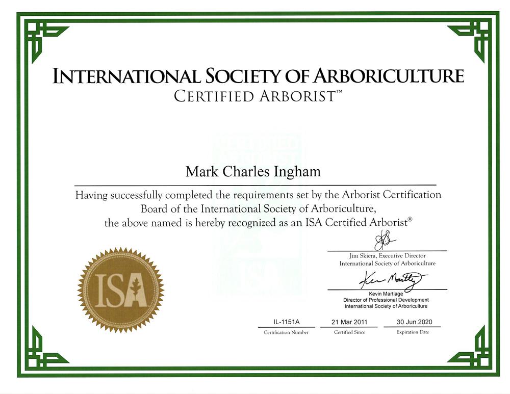 Certified Arborist Marks Tree Care