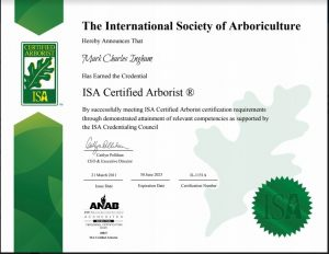 Mark Ingham Certified Arborist
